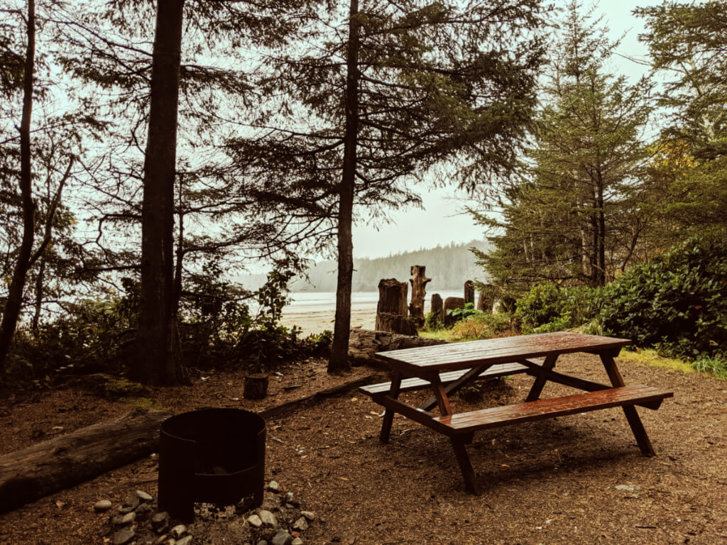 Picnic table and firepit in campsite with views of sandy beach and ocean mist