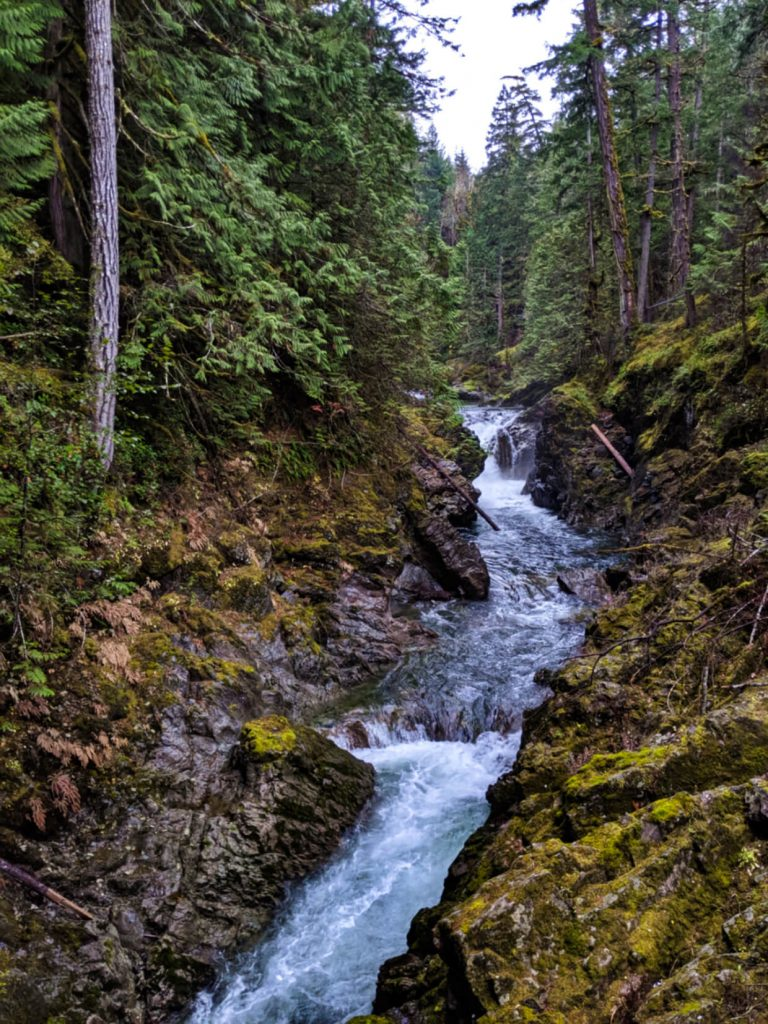 Mossy canyon with fast river running through it, multiple cascades