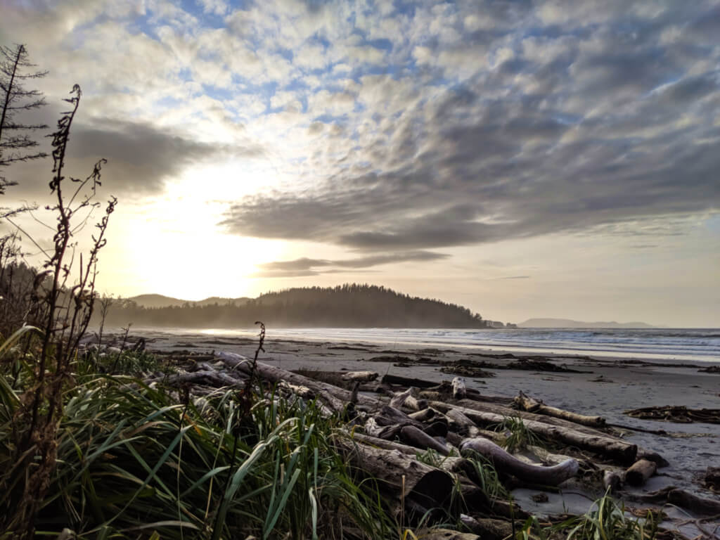 A windswept sandy beach with driftwood and the sun lowering behind the headland