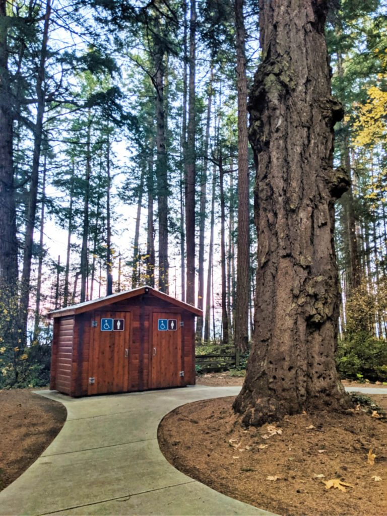 A huge tree sits in front of two outhouses at Rathtrevor Provincial Park