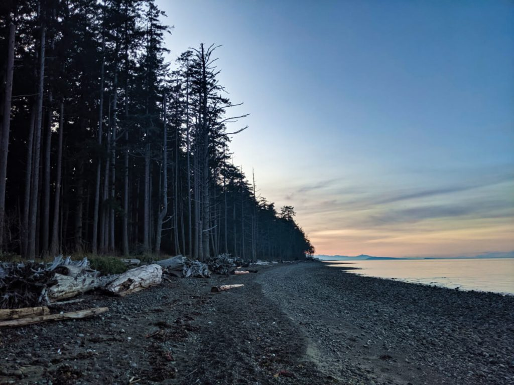 View of rock and sand beach lined with trees, sunset colours in background