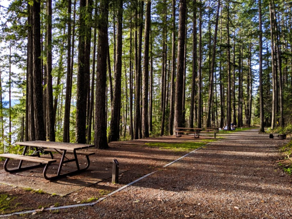 Sproat Lake walk-in campsites with picnic tables, surrounded by trees