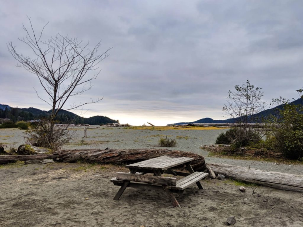 Grey sand beach with driftwood and seaweed and picnic table