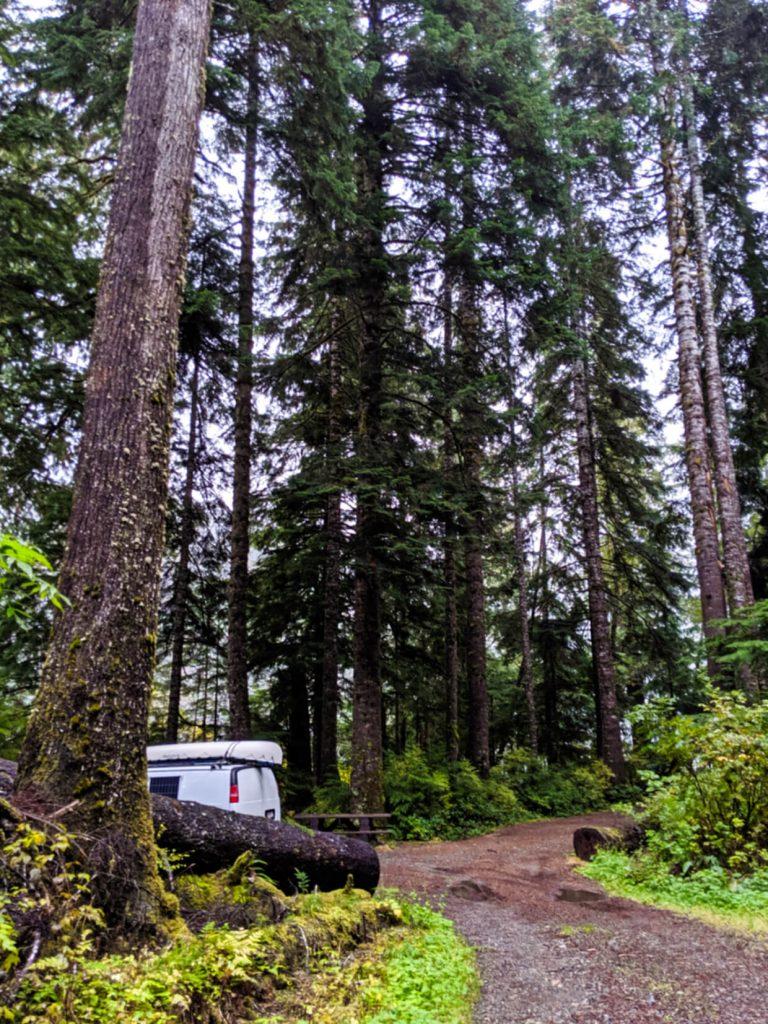 White van hidden behind big trees at Hepler Creek