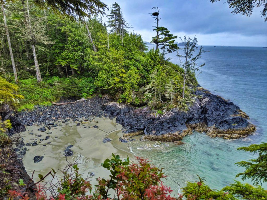 Pocket beach with rocky headland and coastal forest